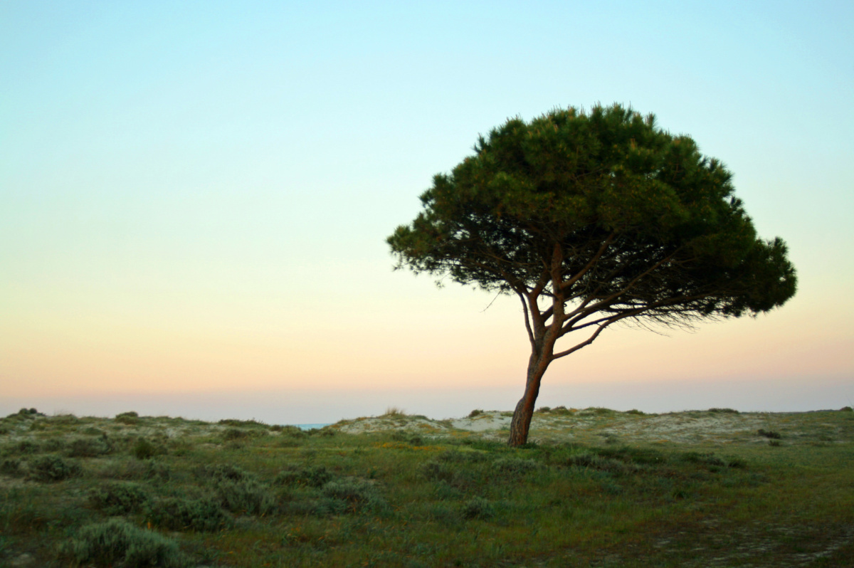 Read more about the article Ostertour Sardinien – Teil 1