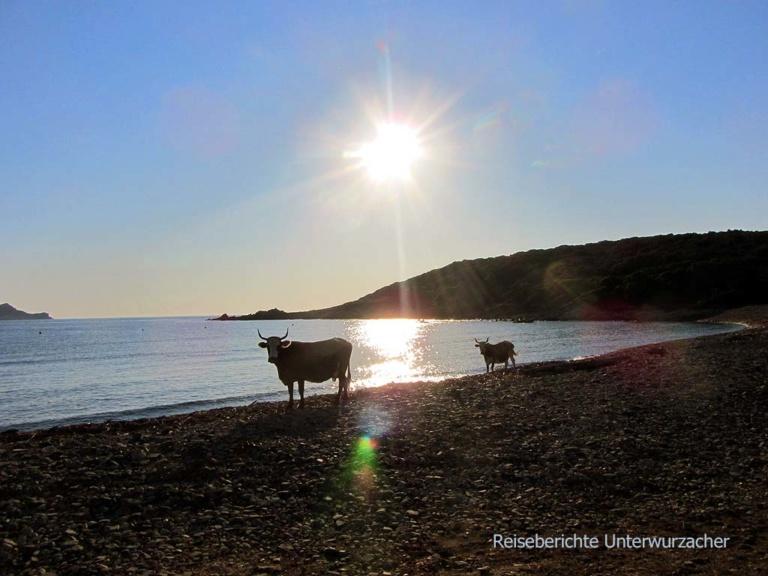 2013_Korsika_016