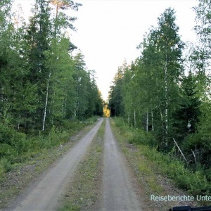 ... auf der Suche nach einem schönen Übernachtungsplatz - ob wir heute noch einen Elch sehen?