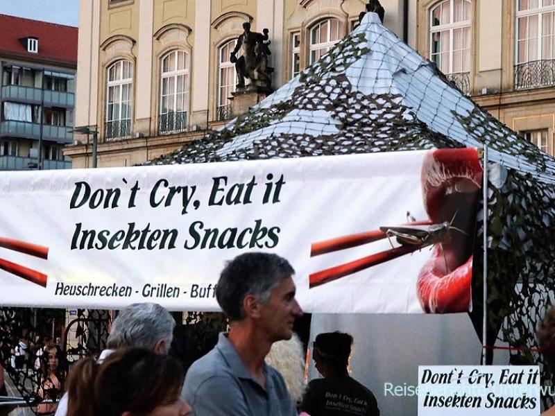Street Foot Festival in Dresden - ich schreie ja eh nicht ...