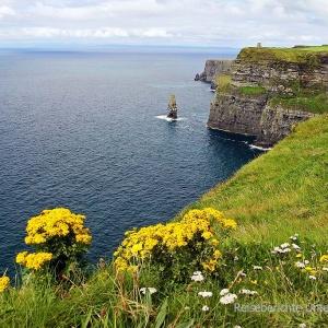 2016_irland271