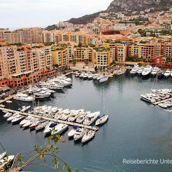 Der alte Hafen in Monaco ohne Möwe ...