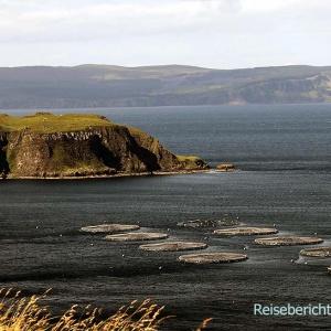 Weiter geht es - vorbei an Fischfarmen - in den Norden der Insel ...